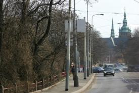 Zeleň podél Svatovítské ulice bude vykácena