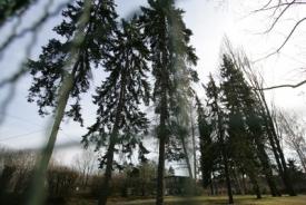 Stromy u tenisových kurtů na Prašném mostě by měly padnout