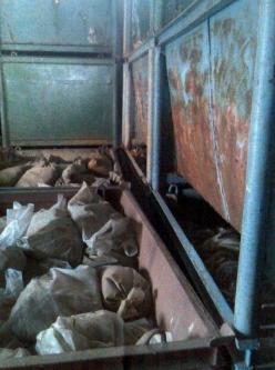 Zrezivělé kontejnery ukrývají stovky tun kadmiového kalu.